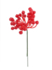 "7"" HOLLY BERRY PICK (36 BERRIES) - RED"