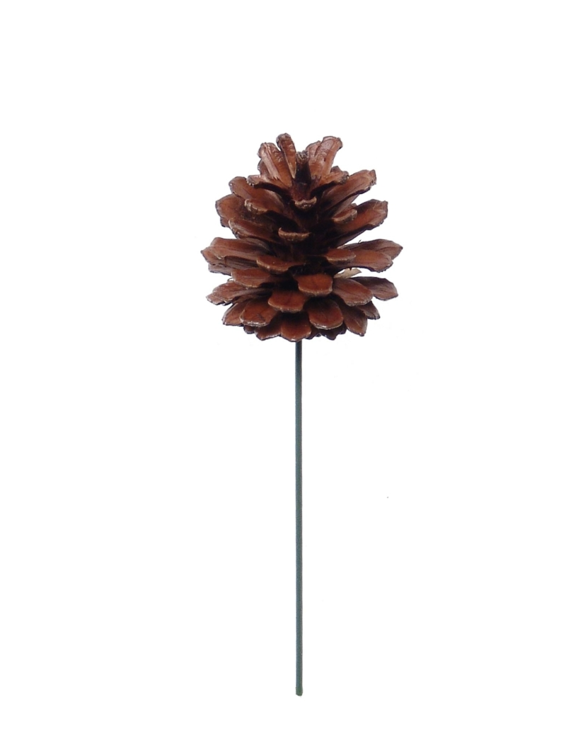 "2.5"" LACQUERED PINE CONE PICK - NATL/LAC"