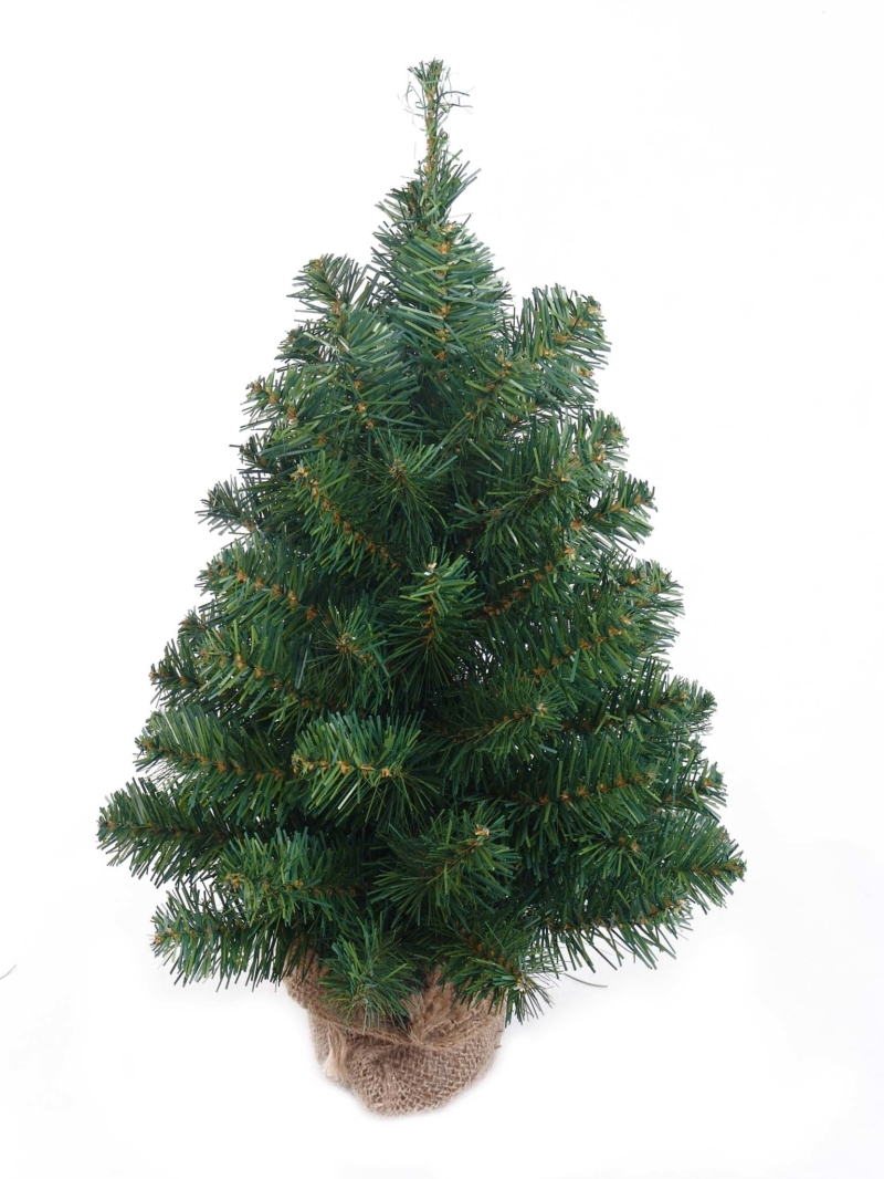 "18"" NORTHERN SPRUCE TREE (63TIPS/BURLAP) - GREEN"