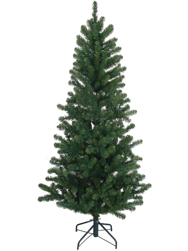 "6.5' NORTHERN SPRUCE PENCIL TREE 555 TIPS 37"" DIAMETER"