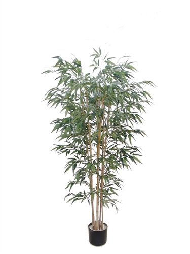 5' BAMBOO TREE W/1045 LVS - GREEN