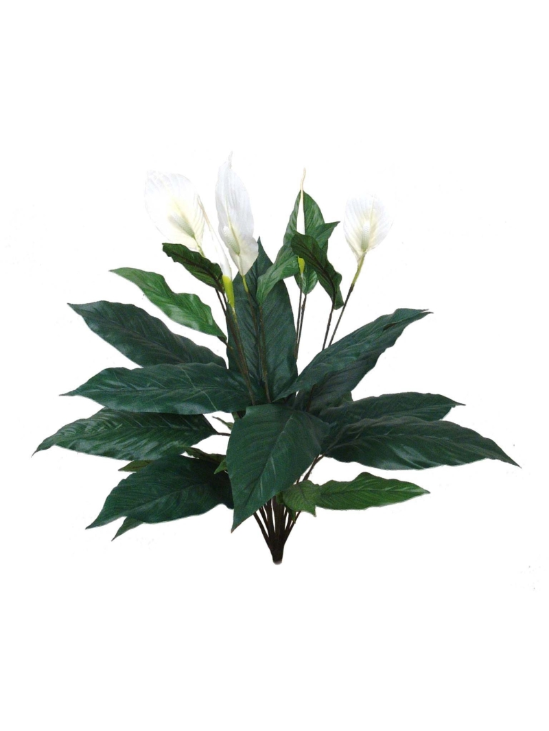 "30"" SPATHIPHYLLUM PLANT 27 LEAVES 5 FLOWERS 2 BUDS"