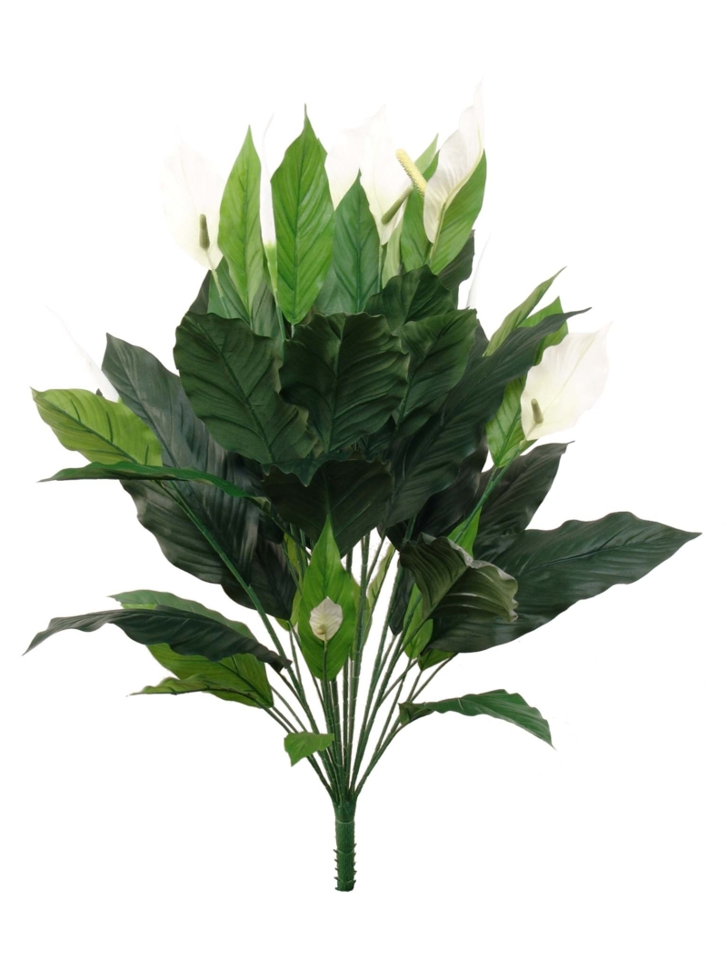"35"" SPATHIPHYLLUM PLANT 44 LEAVES 8 FLOWERS 2 BUDS"