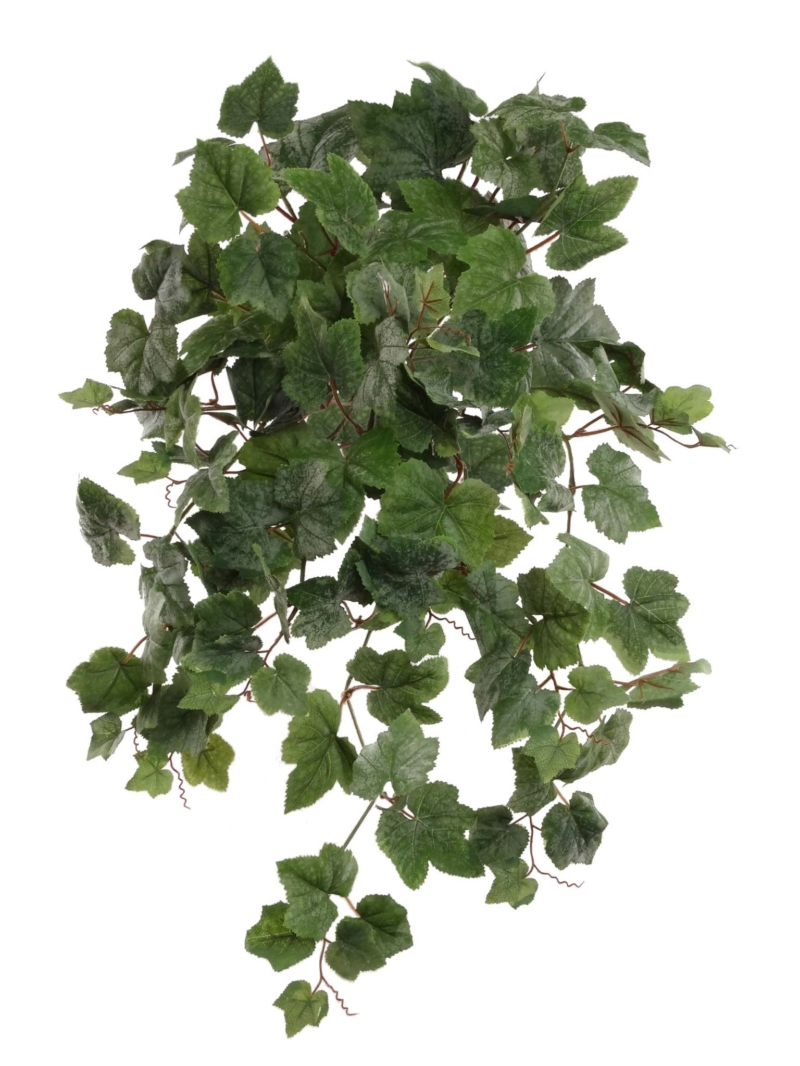 "24"" GRAPE IVY BUSH/130L   - GR"