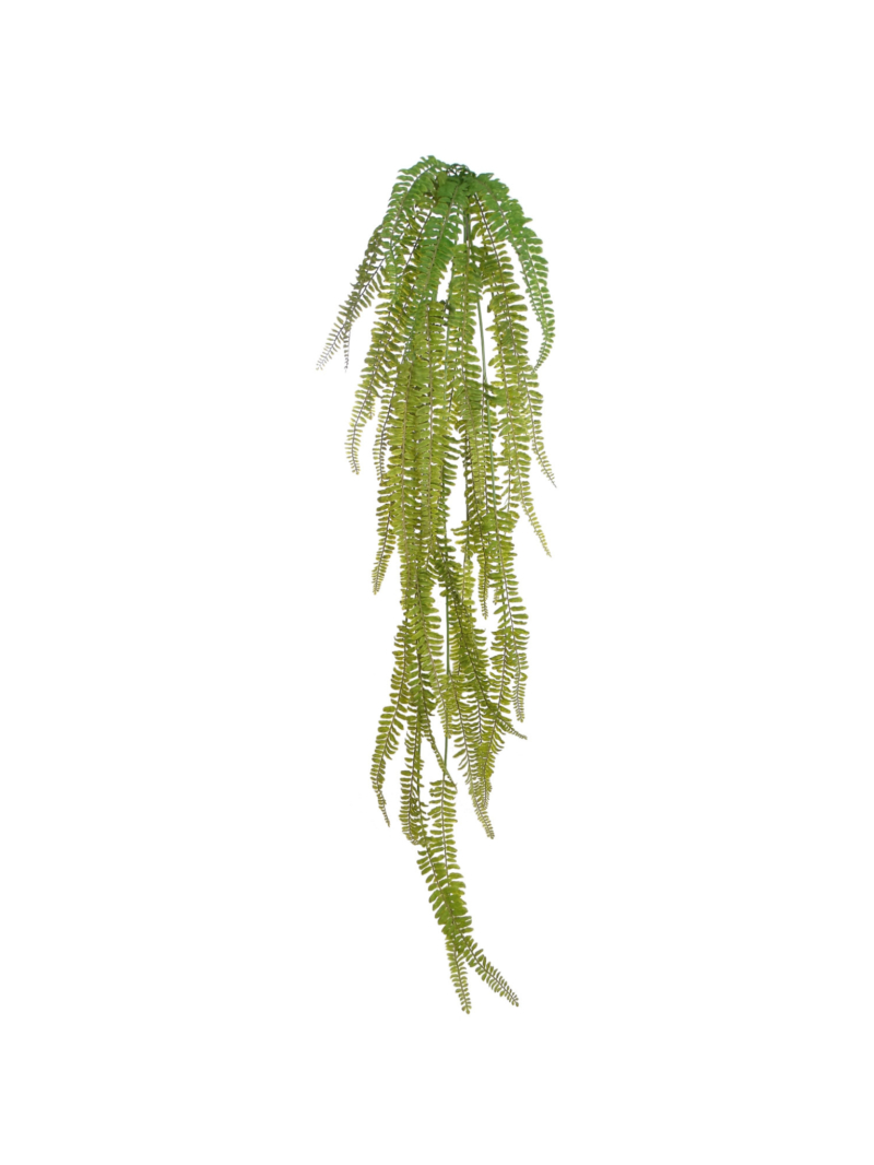 "50"" FERN HANGING BUSH"