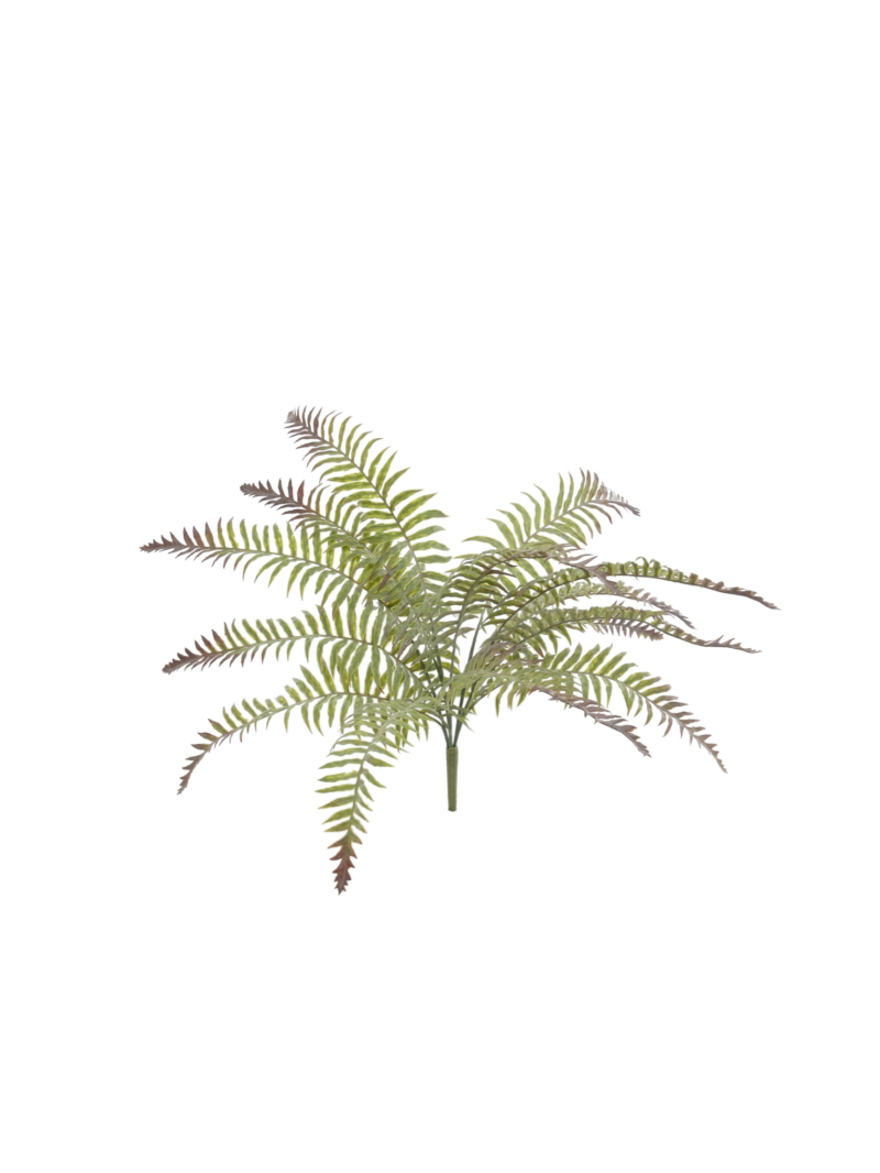 "20"" FROST RIVER FERN BUSH 22""DIA 15LVS - GREEN"