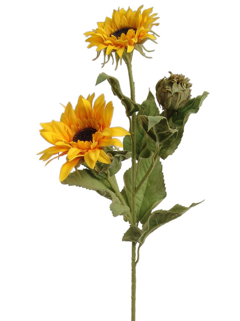 "36"" SUNFLOWER W/2F,1B - YELLOW"