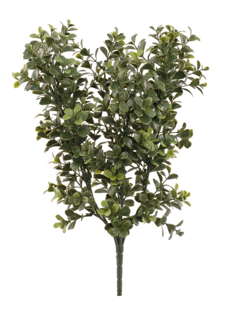 "17"" BOXWOOD BUSH - GREEN"