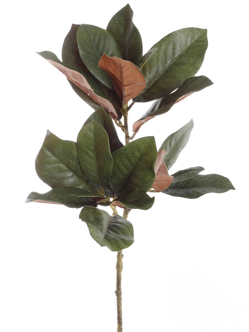 "32"" MAGNOLIA LEAF SPRAYx3 - GREEN"