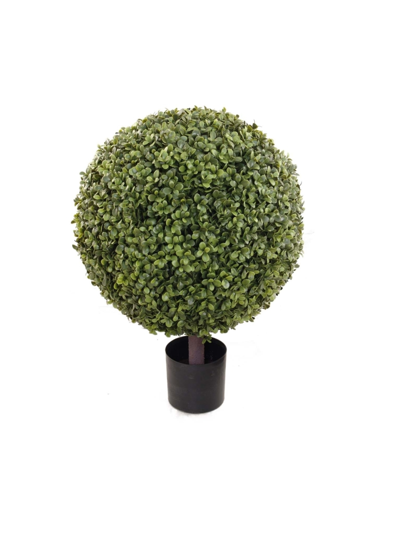 "26"" BOXWOOD BALL TOPIARY 16"" DIA IN POT - GREEN"
