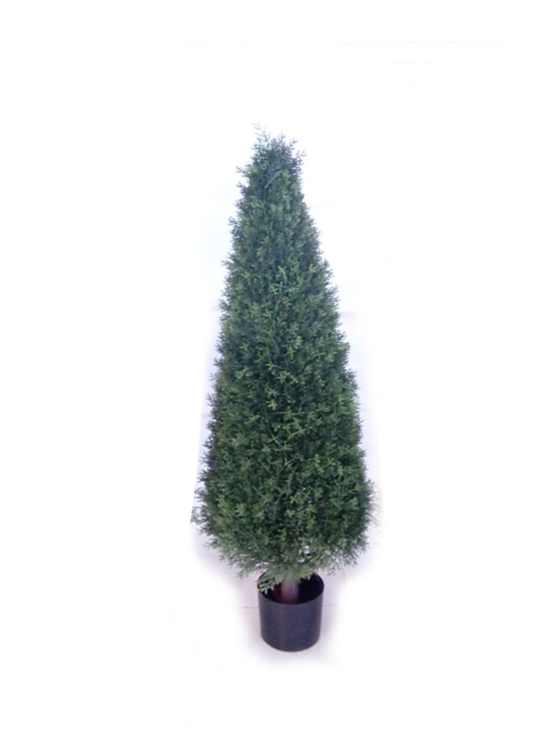 "52"" CEDAR CONE TOPIARY W/ POT - NAT-GR"