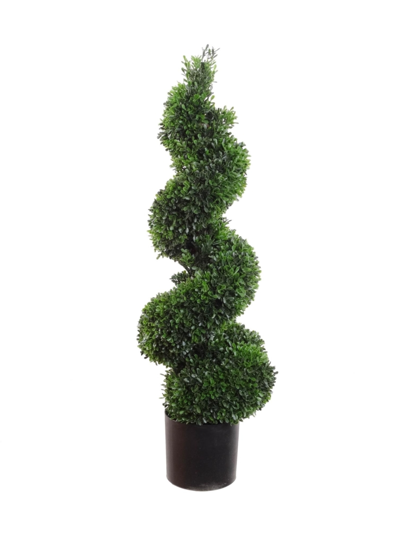 "36"" BOXWOOD SPIRAL TOPIRY"