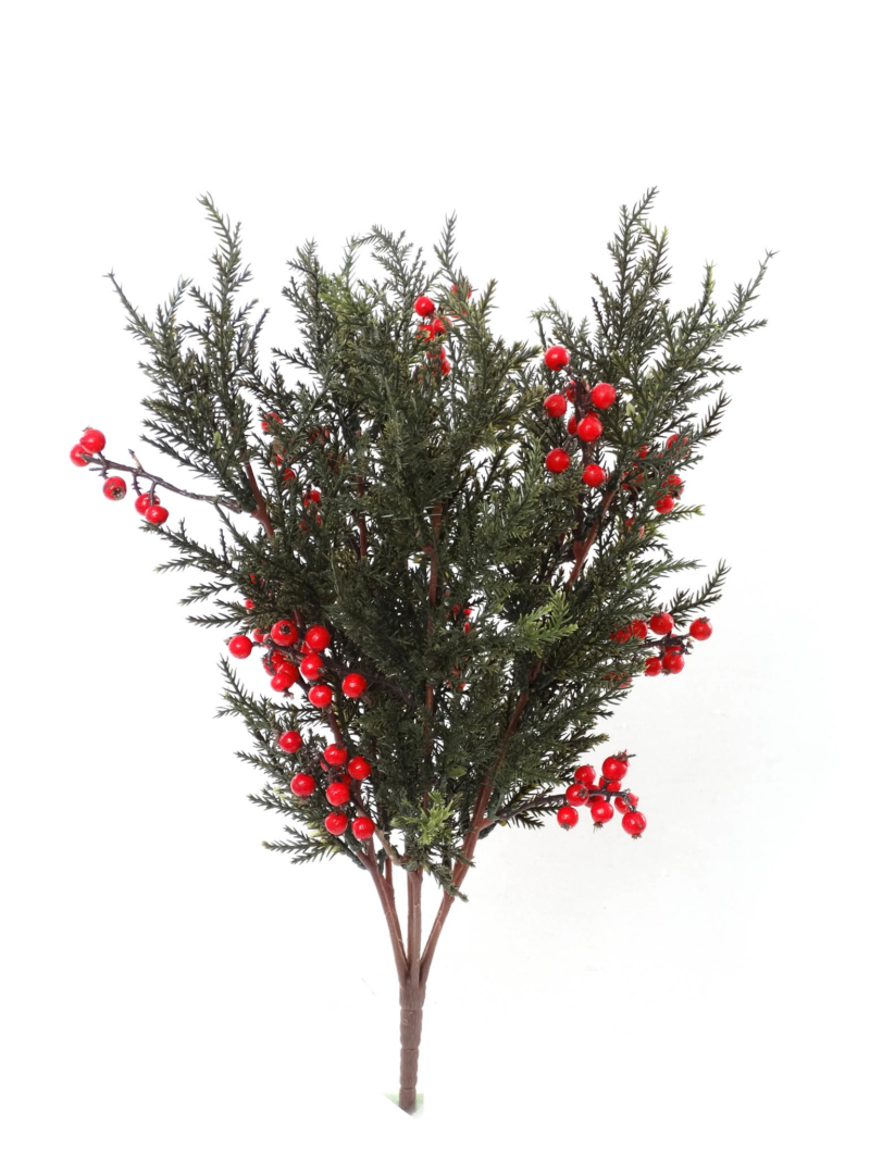 "17"" CEDAR BERRY BUSH - RD/GR"