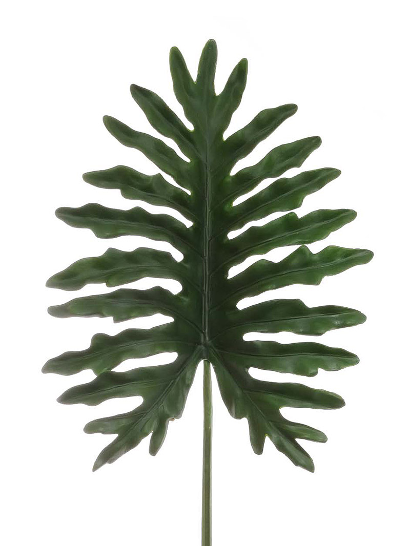 "46"" PHILO SELLOUM LEAF - GREEN"