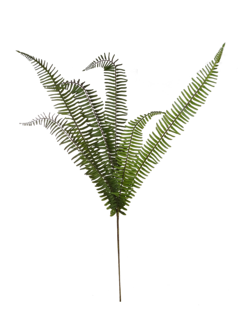 "36"" RIVER FERN SPRAY X6 - GREEN"