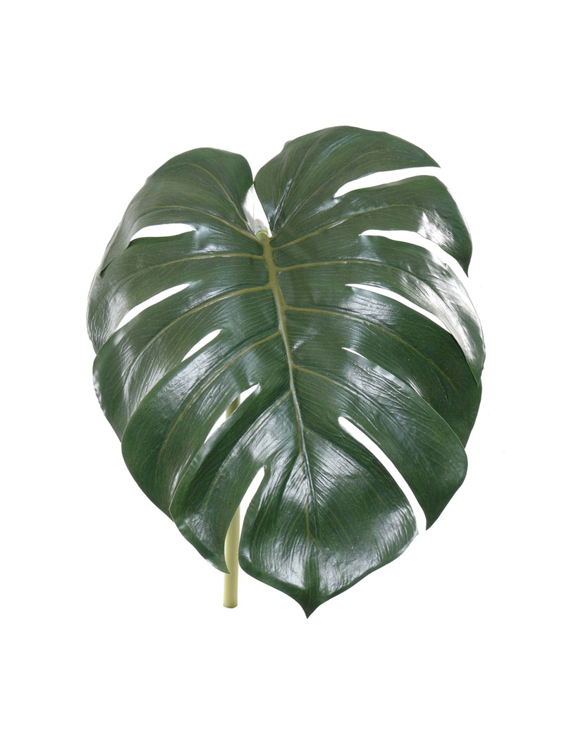 "28"" SPLIT PHILO LEAF 24"" LEAF"