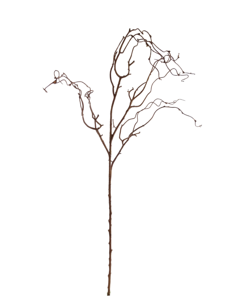 "41"" TWIG BRANCHES - BROWN"