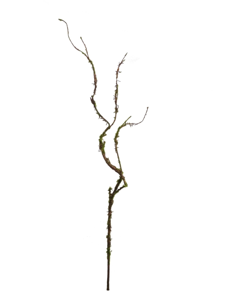 "36"" TWIG SPRAY W/MOSS"