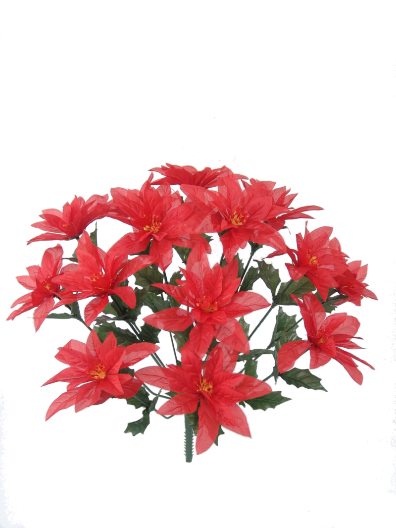 POINSETTIA BUSH X14 - RED