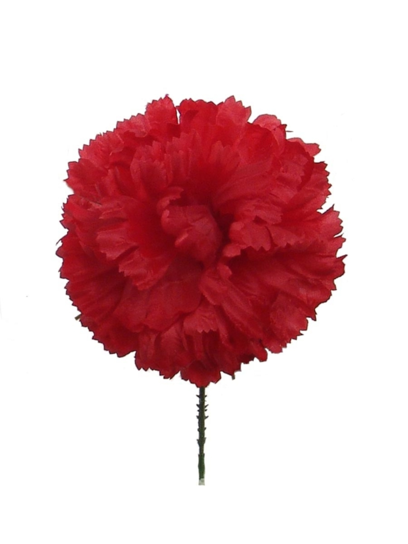 "4.25""DIA CARNATION PICK 5""SL"