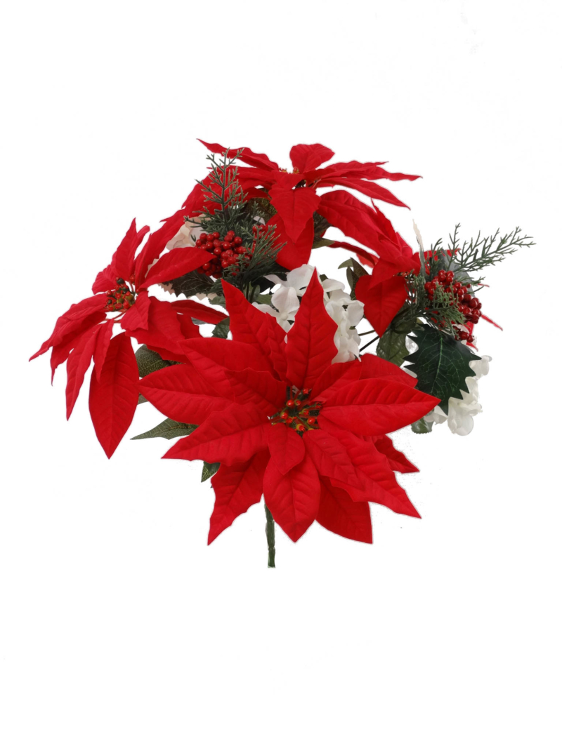 MIX POINSETTIA BUSH X9 - RD/WH