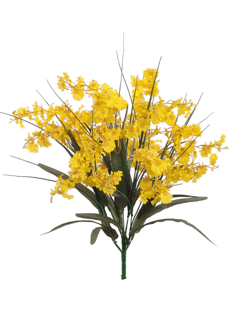 "25""DANCING ORCHID BUSHx12   - YELLOW"