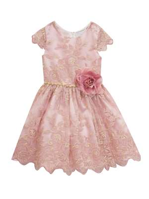 Blush To Gold Embroidered Floral Dress,Rare Editions,Little Girls (2-6X)