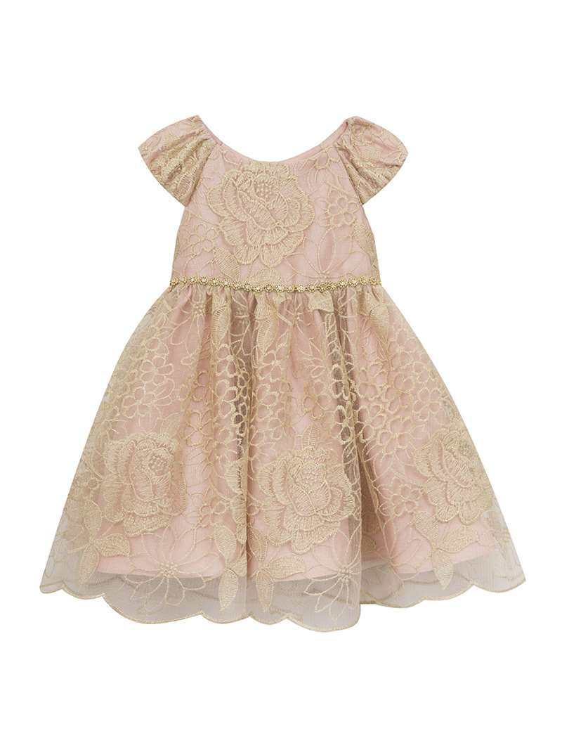 Blush Flower Girl Dress With Gold Embroidered Mesh ,Rare Editions,Baby  Girls (12-24M)