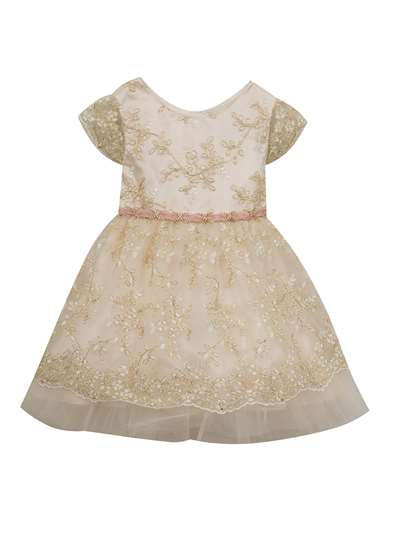 Ivory Gold Embroidery Lace Social Dress, Rare Editions, Little Girls (2-6X)