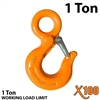 X100 Alloy Eye Hoist Hook