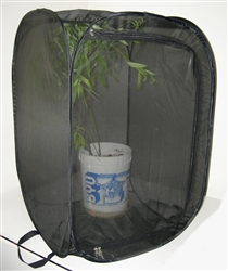 "Black 24"" by 24"" by 36"" Popup Cage with zipper protection (vinyl window)"