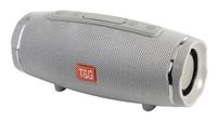 TG-145 Wireless Bluetooth Speaker - Silver