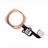 Home Button Main Key Flex Cable Replacement for iPhone 6S & 6S Plus (Rose Gold)