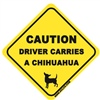 Driver Carries A Chihuahua