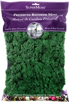 Reindeer Moss, 8oz, Forest Green