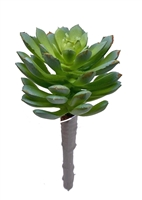Artificial Succulent 5""