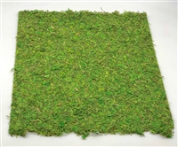 Moss Mat with Glue