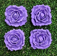 Purple Foam Roses