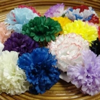Carnation Pick x 100pcs All Colors
