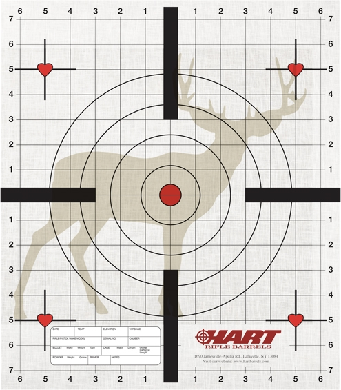 Pack of 40 practice targets designed by hart