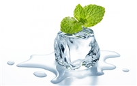 (Capella) Cool Mint Flavoring