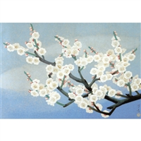 NIPPON KODO | White plum blossoms - Japanese Art Blank Card (10 pcs.).