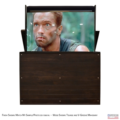 "65"" TV Lift Cabinet - Modern Ironside Outdoor (SC)"