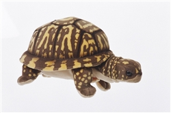 "Box Turtle by Cabin Critters 11"" Long"