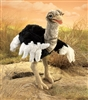 Ostrich Puppet by Folkmanis