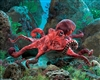 "Red Octopus Puppet 19"" L"