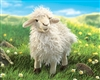 "Longwool Sheep Puppet 16"" L"