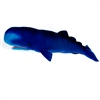"Sperm Whale Plush Toy 31"" L"