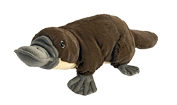 "Platypus  Plush Toy 18"" L"