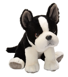 "Boston Terrier Pet Shop 12"" H"